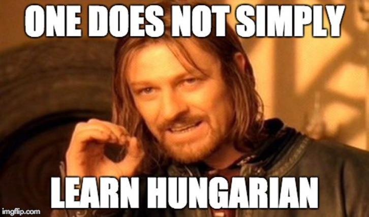 one does not simply learn hungarian